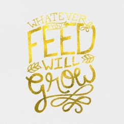 whatever-you-feed-you-grow